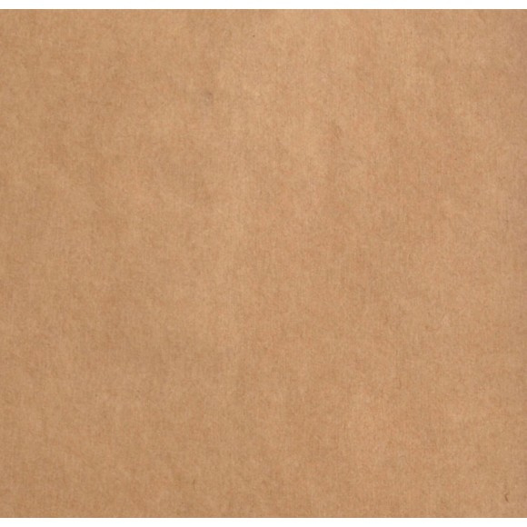 2924-099 Florence cardstock smooth kraft - 100 vel