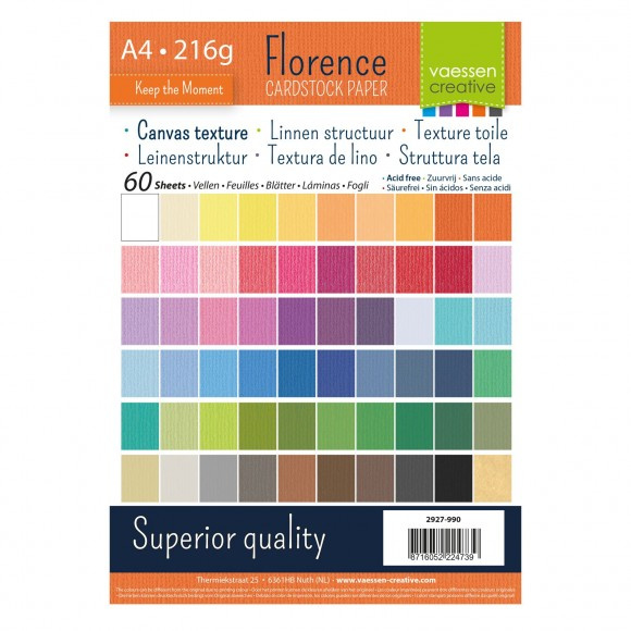 2927-990 Florence cardstock texture A4 x60 multipack