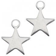 DQ metalen bedel ster klein