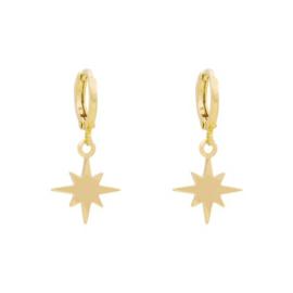 oorbellen gold plated ster