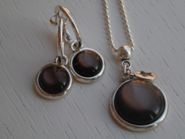 Oorbellen + ketting shinny brown