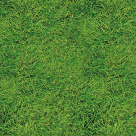 Cadeaupapier   GROEN GRAS