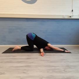 Yin Yoga Opleiding - Yoga Point Woerden - zondag 12 januari 2020 - 13.30-17.30 - Loes Mackenzie