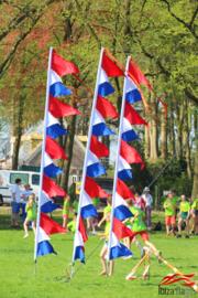 Koningsdag vlaggen