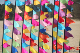 10 festival vlaggen multicolor huren