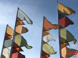 10 festival vlaggen pastel huren
