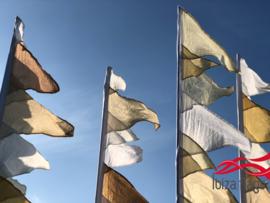 Festivalvlaggen