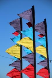 Maatwerk vlaggen
