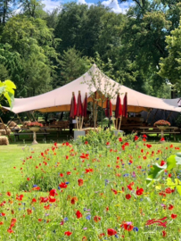 Rode bamboe vlaggen voor Landgoed Lauswold