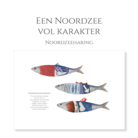 'Een Noordzee vol karakter '