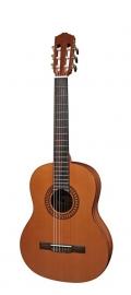 Salvador Cortez Solid Top Artist Series klassieke gitaar CC-22-JR