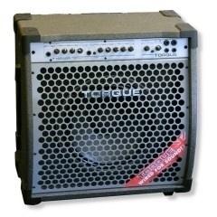 Torque T1002GR 100 Watt Twin Reverb Gitaar Combo.