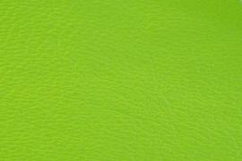 Hermes Lime