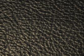 Mammouth Zwart