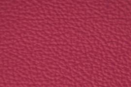 Hermes Purple