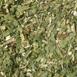 Pure Echinacea Purpurea 10x 100 gram