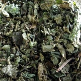 Pure Mariadistel 10x 100 gram