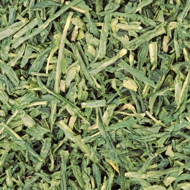 Pure Groene Thee (Sencha) 10x 100 gram