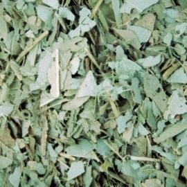 Pure Eucalyptus 10x 100 gram