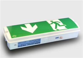 DL295 - Emergency Light LED opbouw plaf/muur