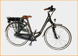 Elektrische Fiets Dutch Fit Trendy