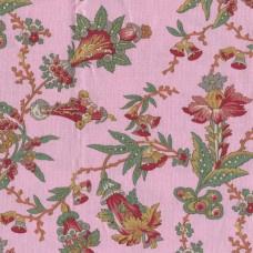Dutch Heritage 1033 Féline pink