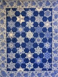 China Blue Star Project kit