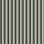 Bathwick by Karen Styles, stripe blue8148-0169