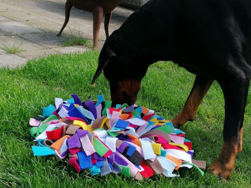Kant-en-klare Snuffelmat MultiColor (14 kleuren)