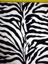 BASIC zebra GLAD