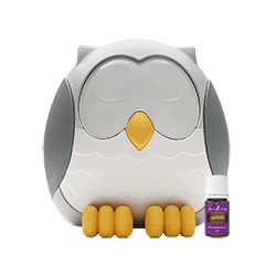 Feather the owl / Uil diffuser