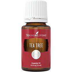 Young Living - Tea Tree- 5ml of 15ml