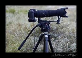 lenssteun voor de sigma 50-500mm en 150-500mm