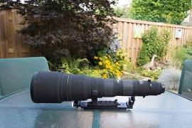 lenssteun voor de Sigma AF 300-800mm f/5.6 EX DG HSM APO