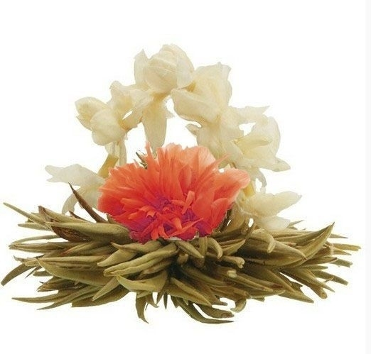 Theebloem - Tea Flower You Lazy!