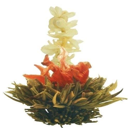 Theebloem - Tea Flower Studdymuddy