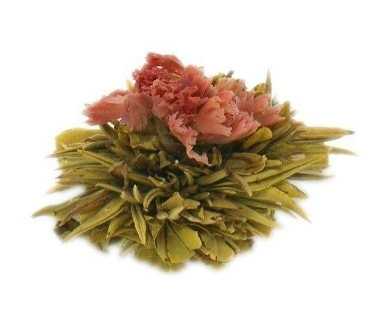 Theebloem - Tea Flower Sleepaholic