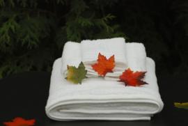Comfortpakket (bij arrangementen)