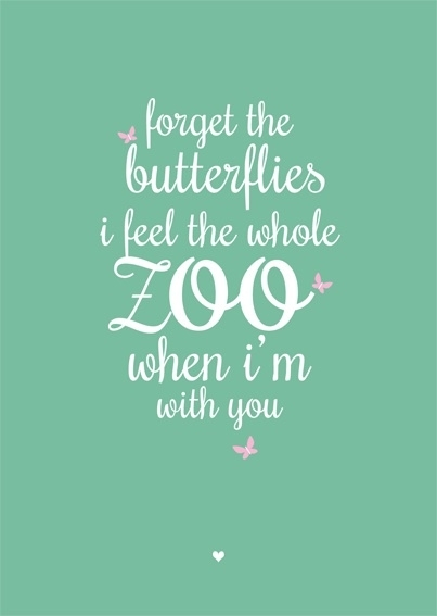 Forget The Butterflies