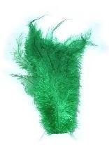 Pieten veren groen klein