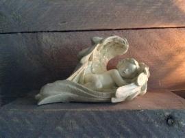 Slapende Engel In Vleugel