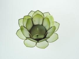 waxinelicht lotus klein groen