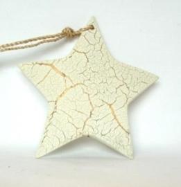 Witte Kerstster met goudkleurige aders