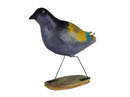 Zeeblauwe vogel