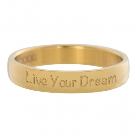 R2109-1 Live Your Dream Goud 4mm