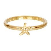 R3507-01 Sea Star 2mm Gold