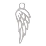 IJCC06-3 Angel Wing Zilver