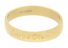R2104-1 Carpe Diem Goud 4mm
