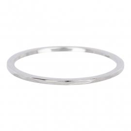R3901-3 Wave Zilver 1mm