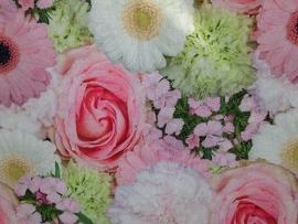 Bekleding bloemenveld